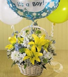 Baby Boy Basket from Martinsville Florist, flower shop in Martinsville, NJ