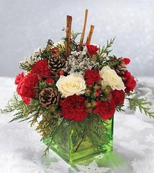 Holiday Cube from Martinsville Florist, flower shop in Martinsville, NJ