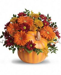 Country Pumpkin from Martinsville Florist, flower shop in Martinsville, NJ