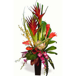Tropical Island from Martinsville Florist, flower shop in Martinsville, NJ