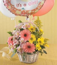 Baby Girl Basket from Martinsville Florist, flower shop in Martinsville, NJ