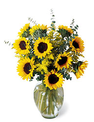 Endless Sunflower Bouquet from Martinsville Florist, flower shop in Martinsville, NJ
