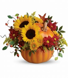 Autumn Joy from Martinsville Florist, flower shop in Martinsville, NJ