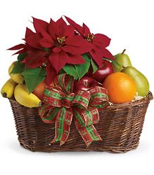 Fruit and Poinsettia Basket from Martinsville Florist, flower shop in Martinsville, NJ