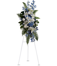 Ocean Breeze Spray from Martinsville Florist, flower shop in Martinsville, NJ