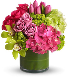 New Sensations from Martinsville Florist, flower shop in Martinsville, NJ