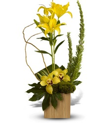 Bamboo Tropics from Martinsville Florist, flower shop in Martinsville, NJ