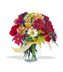 Joyful and Thrilling from Martinsville Florist, flower shop in Martinsville, NJ