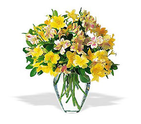 Sparkling Alstroemeria from Martinsville Florist, flower shop in Martinsville, NJ