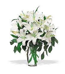 Perfect White Lilies from Martinsville Florist, flower shop in Martinsville, NJ