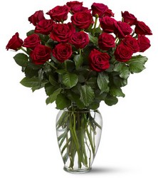 Two Dozen Red Roses from Martinsville Florist, flower shop in Martinsville, NJ