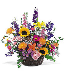 Summertime Sensation Basket from Martinsville Florist, flower shop in Martinsville, NJ