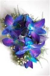 BLUE DENDRO WRISLET from Martinsville Florist, flower shop in Martinsville, NJ